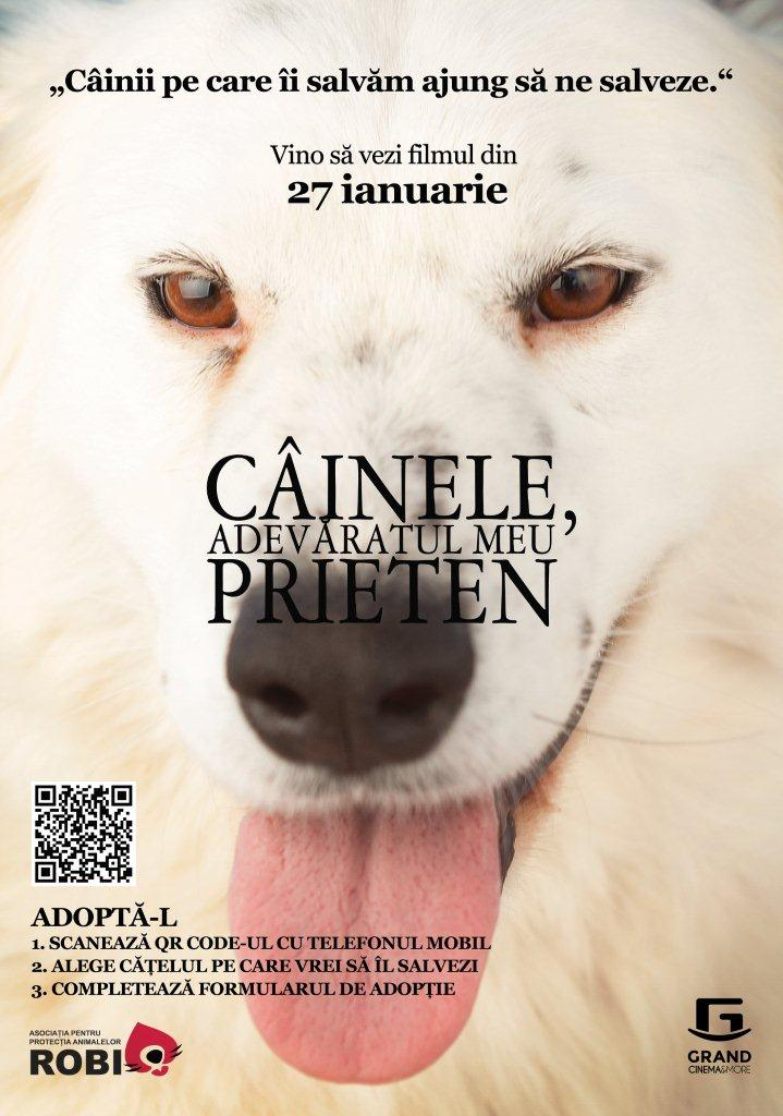 Adopta un caine_Grand Cinema & More